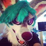 @naritacoree.fur Profile Image | Linktree
