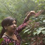@shabbyshabzz Profile Image | Linktree