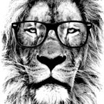 @shop_design_tshirts Profile Image | Linktree