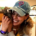 PAWS OF HOPE NYC❤ (pawsofhopenyc) Profile Image | Linktree