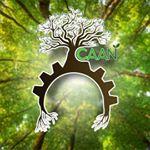 @caallannishioka Profile Image | Linktree