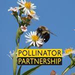 @pollinatorpartnership Profile Image | Linktree