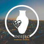 @insejeccg Profile Image | Linktree