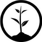 @onetreeplanted Profile Image | Linktree